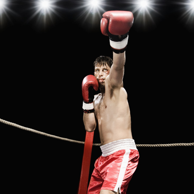 """Boxer extending arm in boxing ring"" stock image"