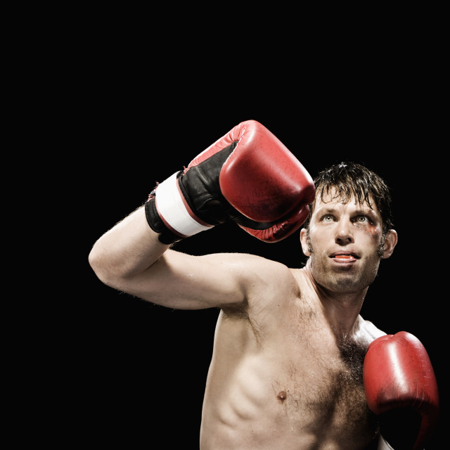 """Boxer in fighting stance"" stock image"