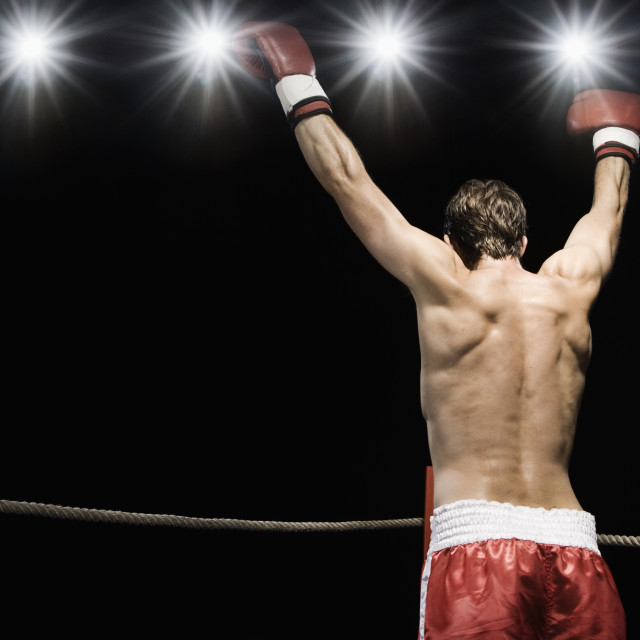 """Boxer standing in boxing ring with gloves raised"" stock image"