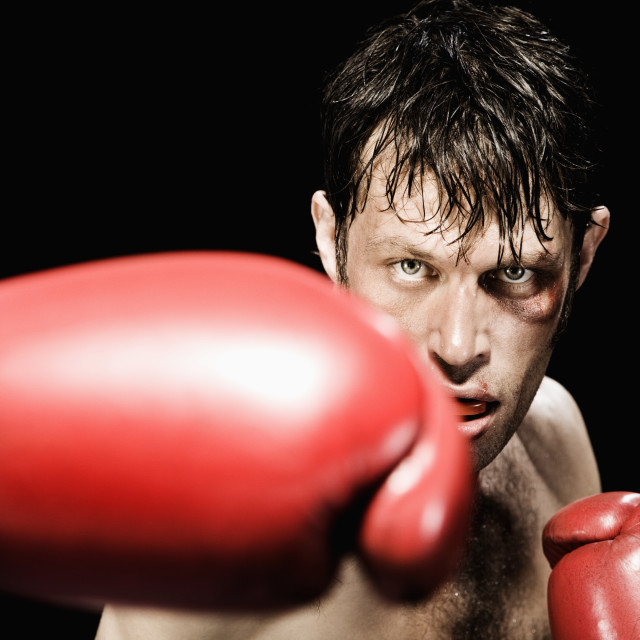 """Close up of boxer boxing"" stock image"