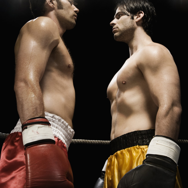 """Boxers facing off in boxing ring"" stock image"
