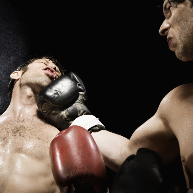 """Boxer punching opponent in jaw"" stock image"