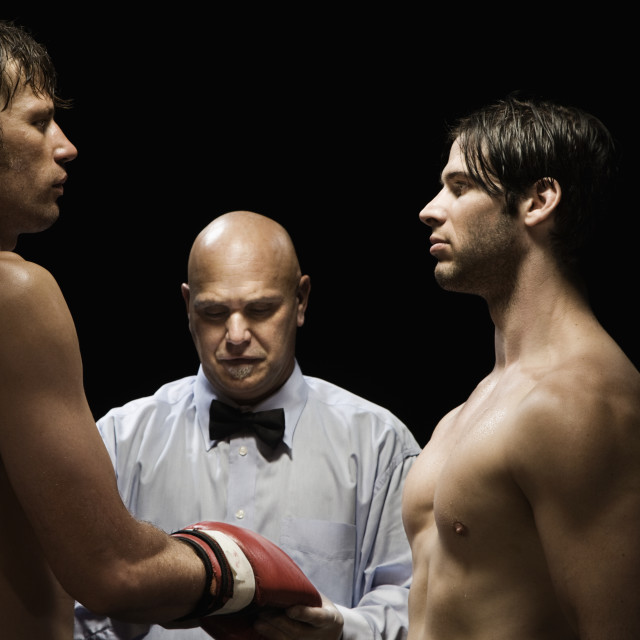 """Referee checking boxer's gloves"" stock image"