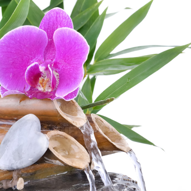 """""""orchid and heart-shaped pebble on fountain"""" stock image"""
