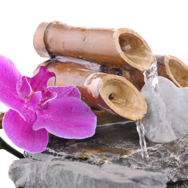 """""""orchid and heart on a little fountain"""" stock image"""
