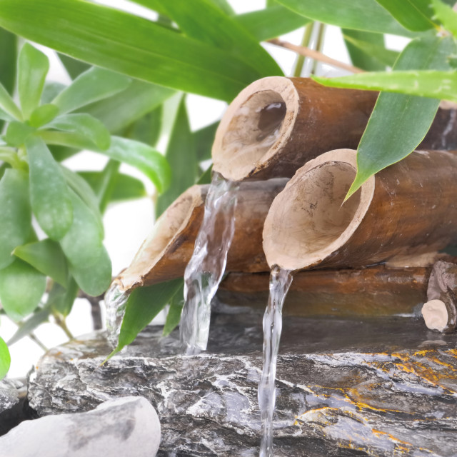 """little bamboo fountain"" stock image"