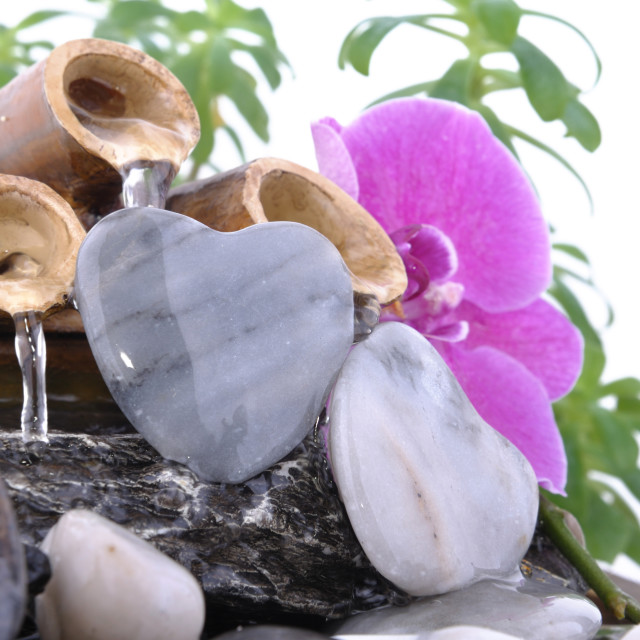 """""""romantic fountain with orchid"""" stock image"""