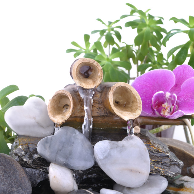 """""""orchid and heart-shaped stone on a fountain"""" stock image"""