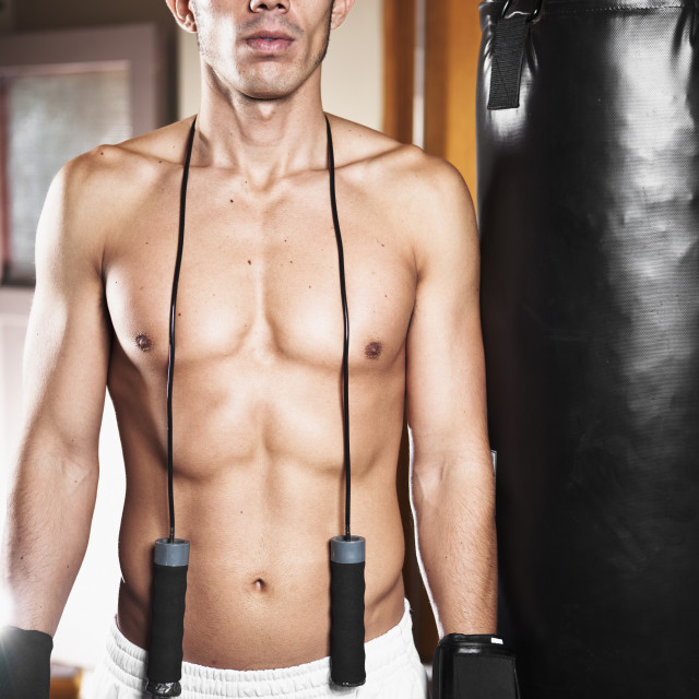 """USA, Seattle, Portrait of young man in gym wearing boxing gloves"" stock image"