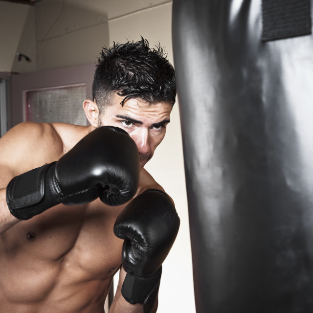 """USA, Seattle, Portrait of young man boxing in gym"" stock image"
