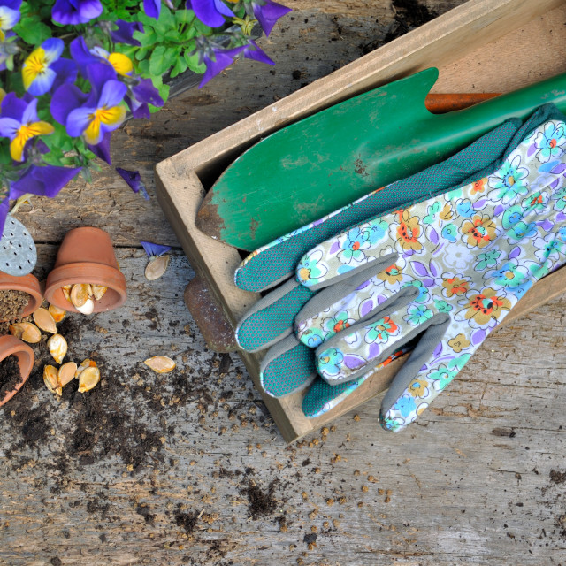 """""""rustic gardening material on plank"""" stock image"""