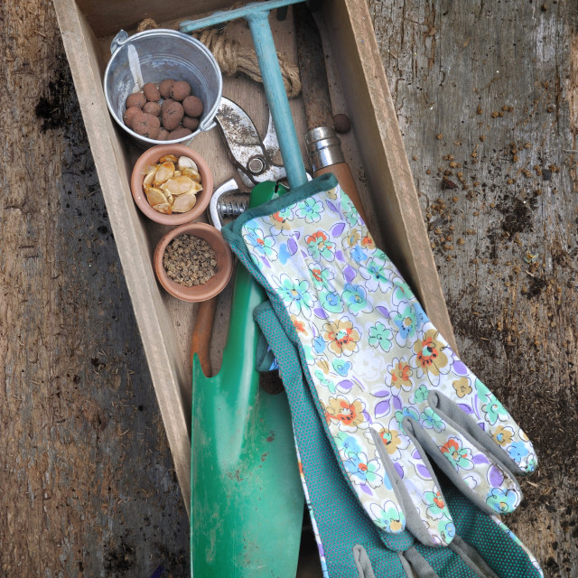 """""""rustic gardening tools in a box"""" stock image"""