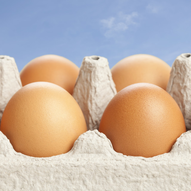 """Eggs in carton against blue sky"" stock image"