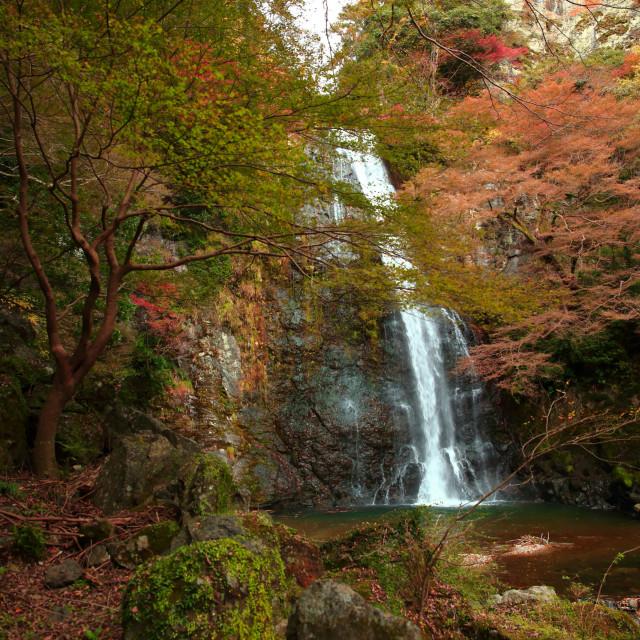 """Minoo Waterfall, Osaka."" stock image"