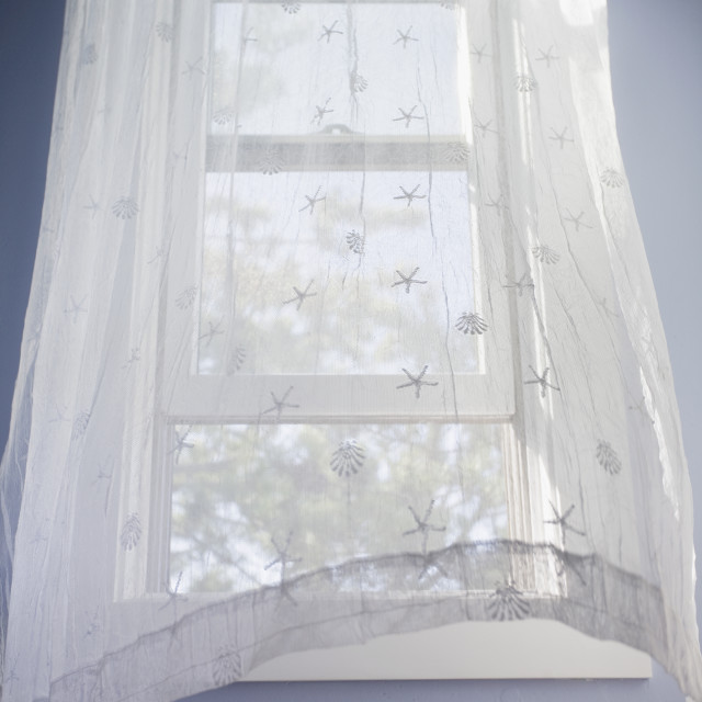 """""""Sheer curtains"""" stock image"""