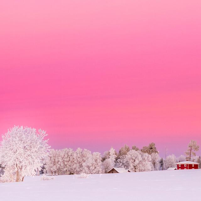 """sunset in Jämtland Sweden"" stock image"