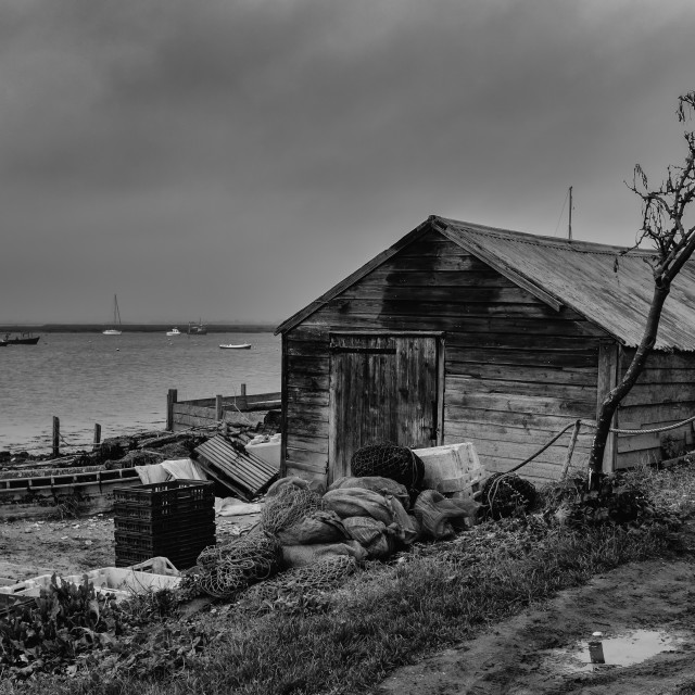 """Oyster Shed"" stock image"