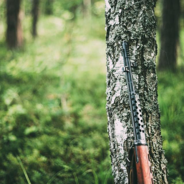 """Soviet rifle of World War II - SVT 40 - Samozaryadnaya Vintovka Tokareva"" stock image"