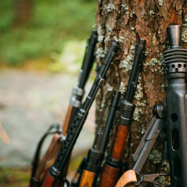 """Soviet and German rifles of World War II - SVT 40 - Samozaryadnaya Vintovka..."" stock image"