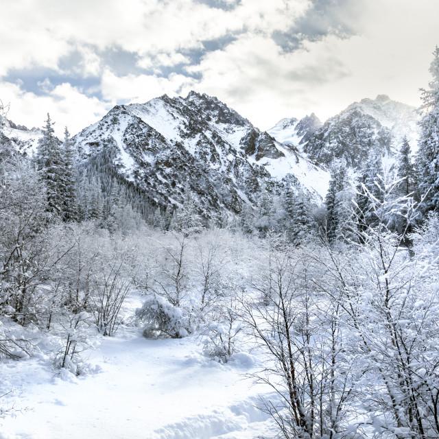 """Ala Archa National Park, Kyrgyzstan"" stock image"