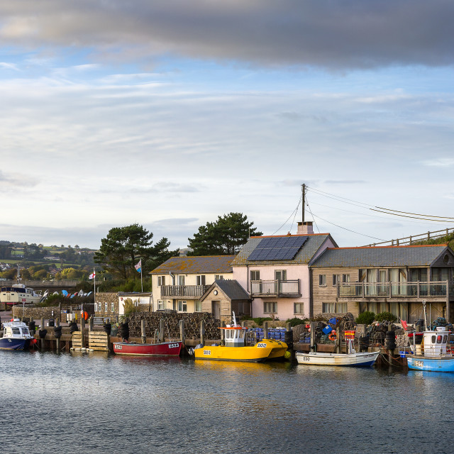 """Axmouth Harbour"" stock image"