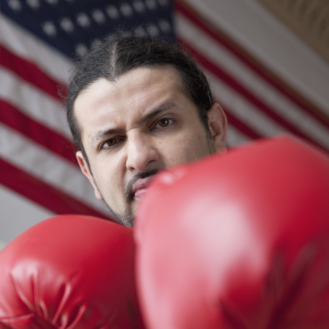 """Angry American boxer"" stock image"