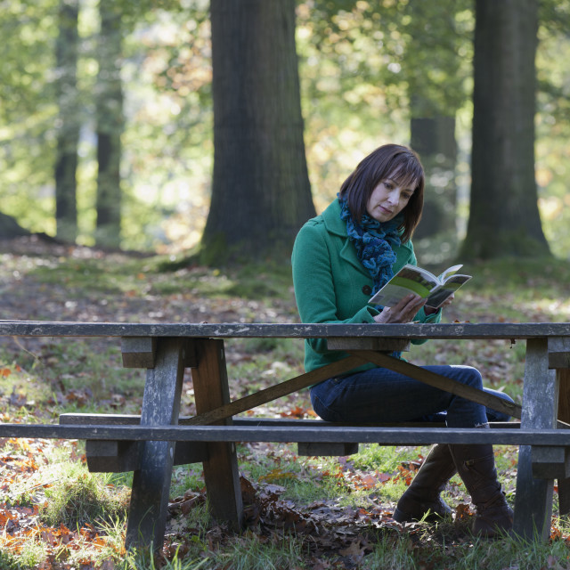 """The Netherlands, Veluwezoom, Posbank, Woman reading book in park"" stock image"