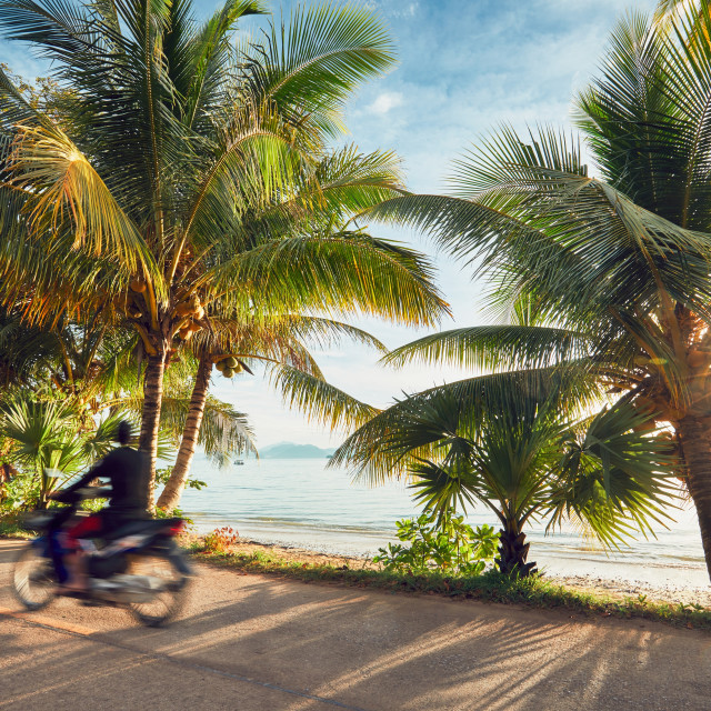 """""""Road trip on the tropical island"""" stock image"""