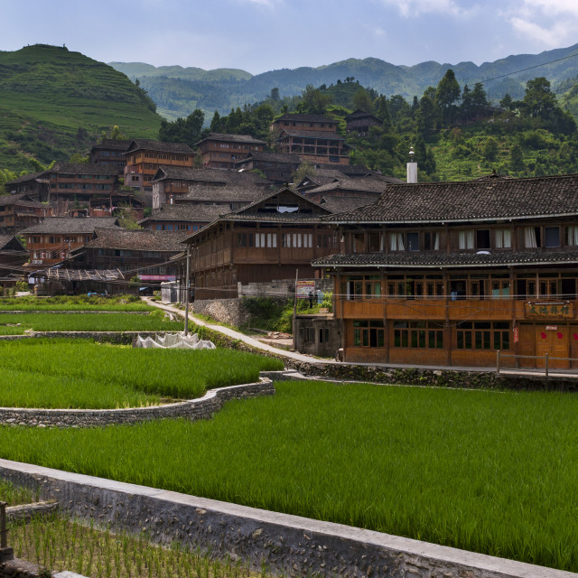 """Dazhai, China - August 3 ,2012: View of the village of Dazhai, with wood houses and rice fields along the slopes of the surrounding mountains in China"" stock image"