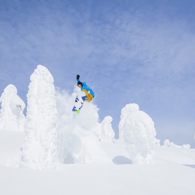 """""""Snowboarder jumping over snowy tree"""" stock image"""