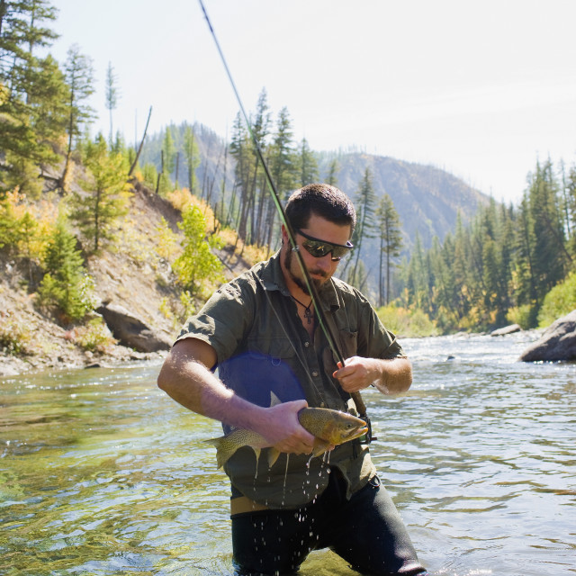 """USA, Montana, Man fly fishing in North Fork of Blackfoot River"" stock image"