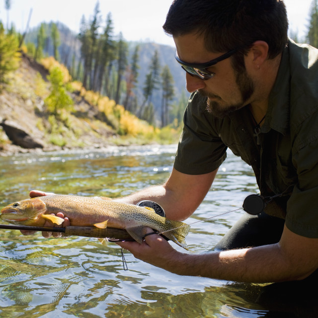 """USA, Montana, Man holding fish in North Fork of Blackfoot River"" stock image"