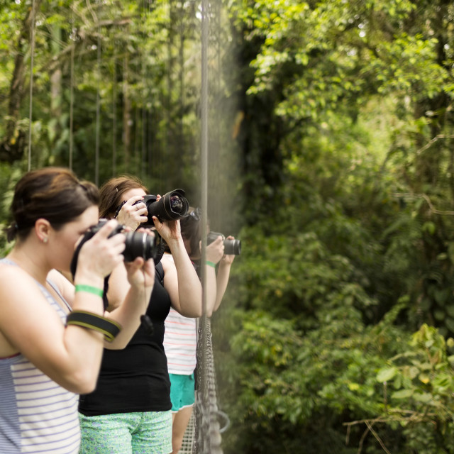"""""""Young women photographing in forest"""" stock image"""