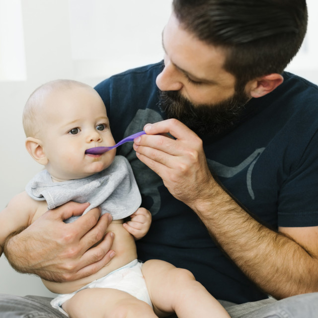 """Father feeding son (6-11 months)"" stock image"