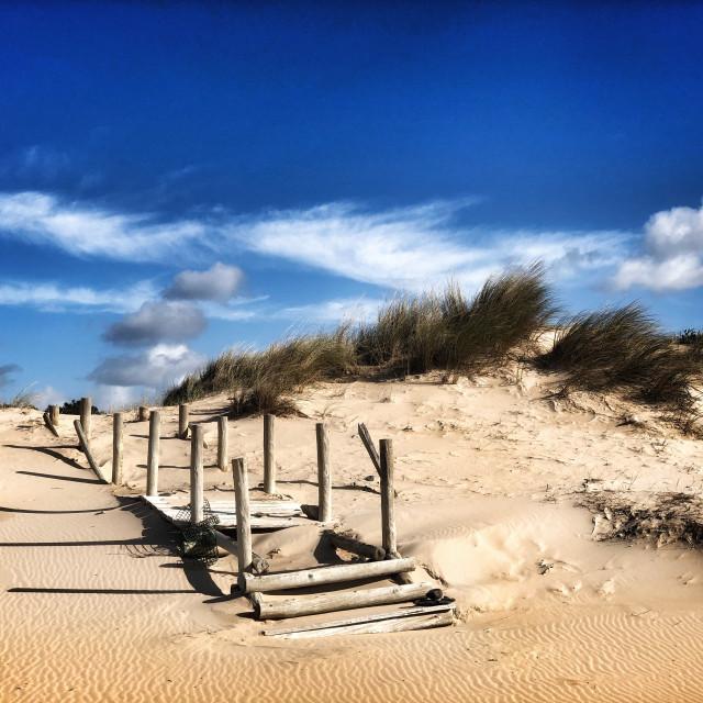 """Steps onto the beach"" stock image"