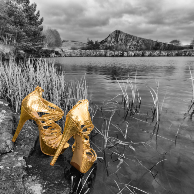 """Golden shoes"" stock image"