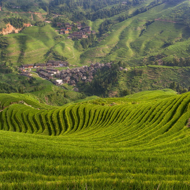 """Beautiful view of the Dazhai village and the surrounding Longsheng Rice Terraces in the province of Guangxi in China; Concept for travel in China"" stock image"