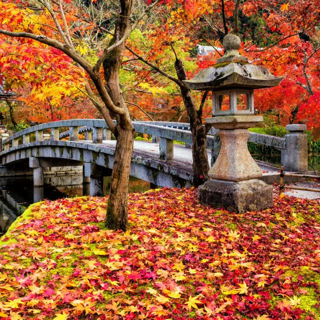 """""""Eikando Zenrinji fall garden, Kyoto"""" stock image"""