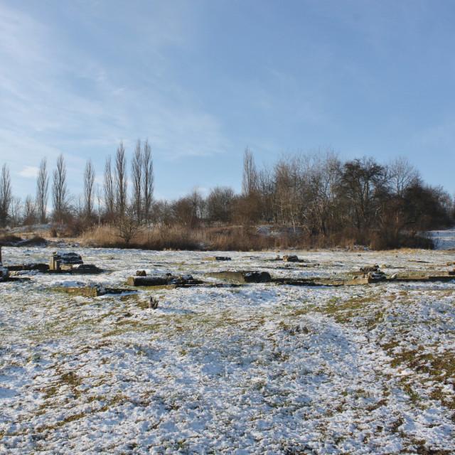 """Former Jewish Cemetery, Krakow"" stock image"