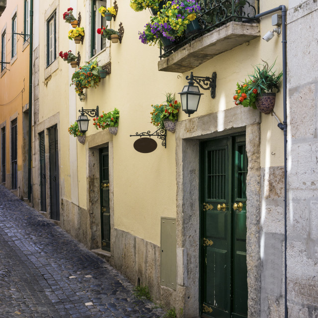 """Narrow street and the facade of a building with flowers in the traditional neighborhood of Alfama in Lisbon, Portugal; Concept for visit Lisbon"" stock image"