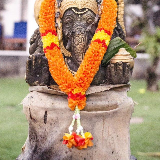 """""""Hindu Elephant Shrine"""" stock image"""