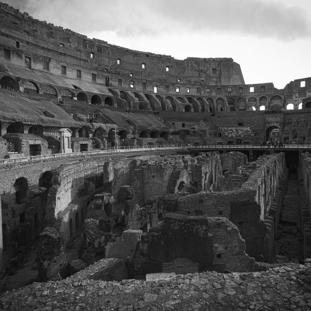 """""""Colosseum in black and white"""" stock image"""