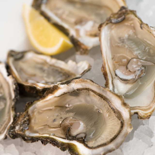 """""""Fresh open and closed oysters with lemon isolated on white"""" stock image"""