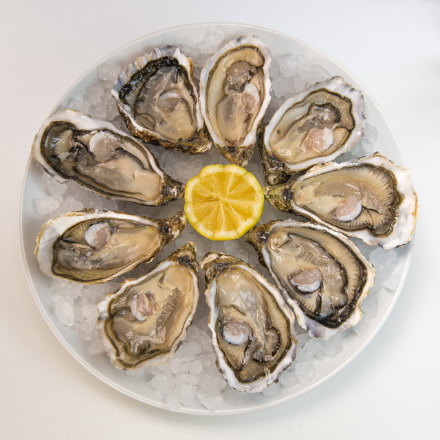 """""""Oysters in ice and lemon on a white plate"""" stock image"""