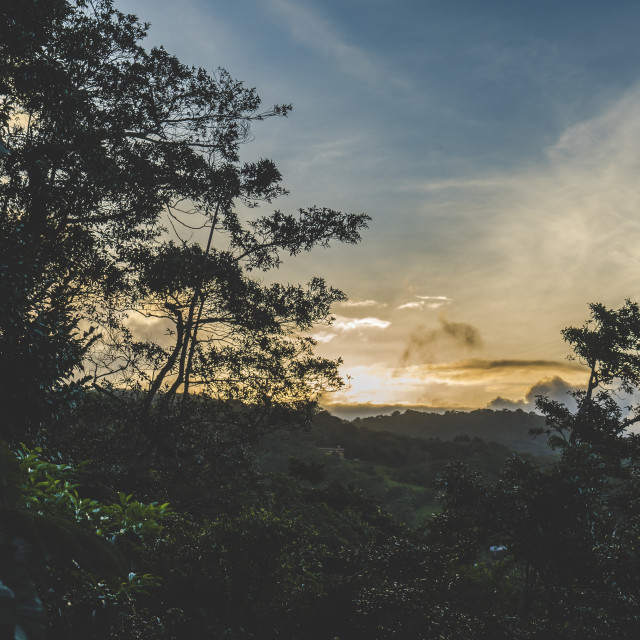 """Sunset in Monteverde"" stock image"