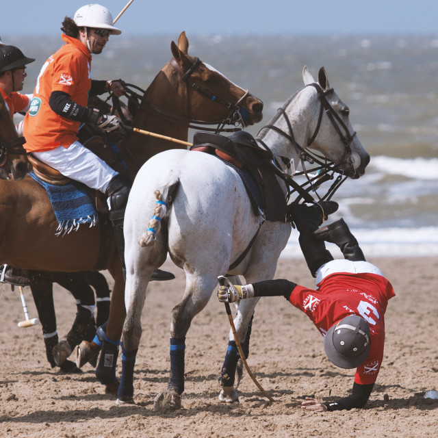 """Beach Polo, falling of a horse"" stock image"