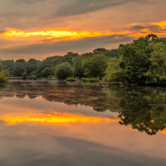 """""""Tranquil Reflections"""" stock image"""