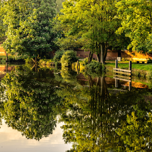 """Morning on the Wensum"" stock image"