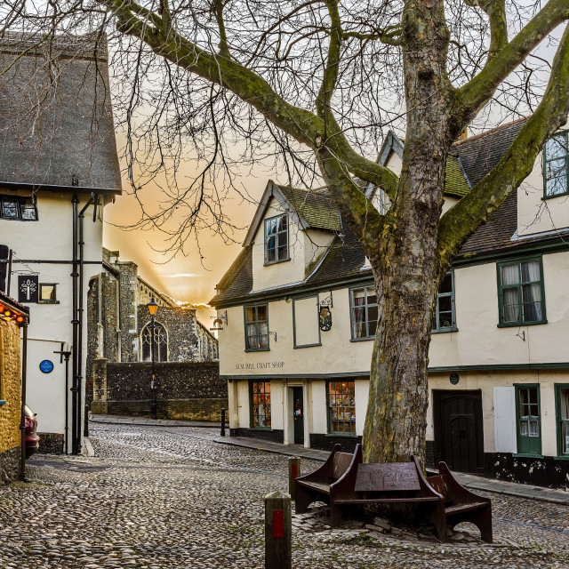 """Elm Hill"" stock image"