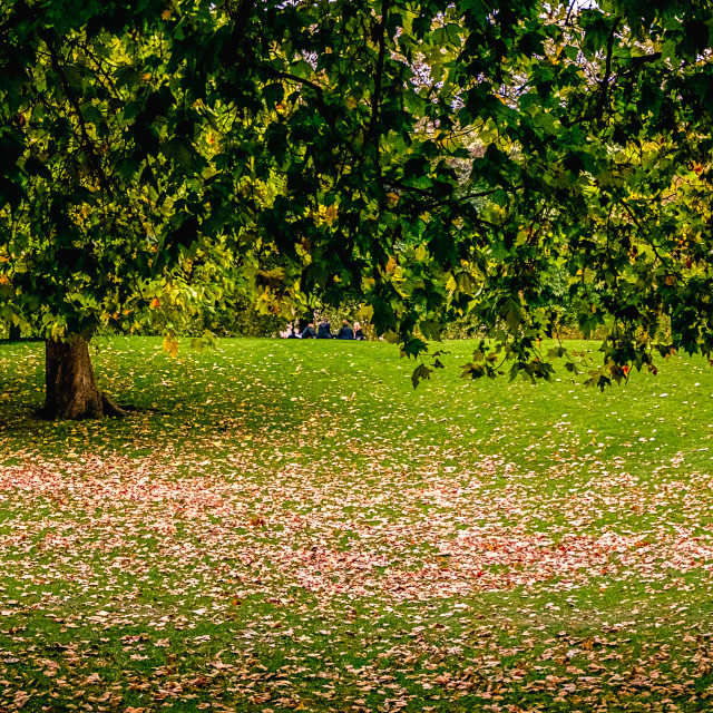 """London Park"" stock image"